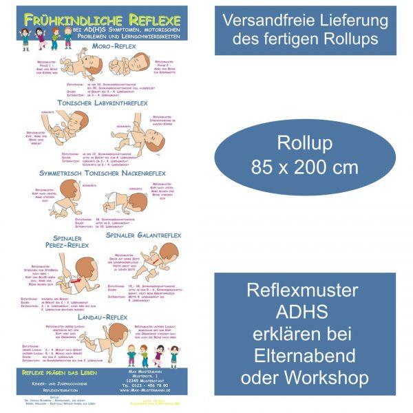 Frühkindliche Reflexe Reflexmuster bei ADHS Symptomen Rollup